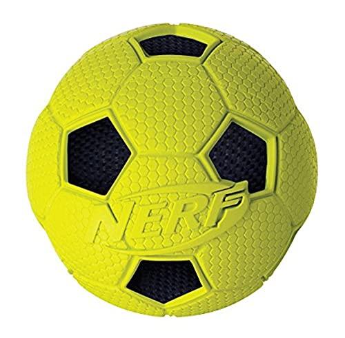Nerf Dog Hundespielzeug Soccer Crunch Ball, Fußball mit...