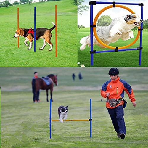 QHWJ Hunde-Agility-Trainingsgeräte Set mit 1...