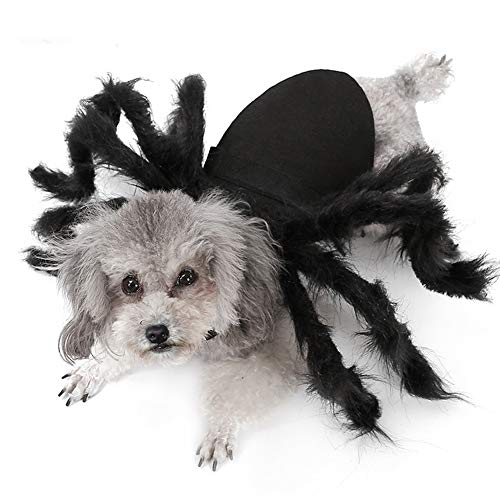 Adnikia Halloween Haustier Cosplay Spinnenkostüm Hund Katze...
