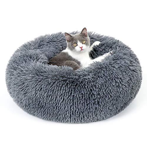 rabbitgoo Katzenbett Hundebett flauschig Kleine Hunde Katzenkorb...