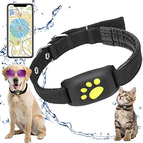 XFTOPSE GPS Tracker Hund Katzenhalsband, GPS Rückruffunktion...
