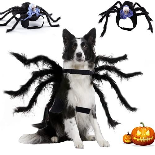 Dorakitten Haustier Hund Katze Halloween Spinnenkostüm...