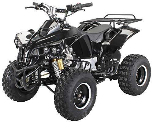 Kinder Quad S-10 125 cc Motor Miniquad Midiquad 125 ccm Warrior...