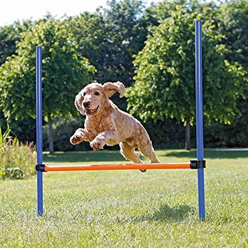 Trixie 3207 Dog Activity Agility Hürde, Kunststoff, 123 × 115...