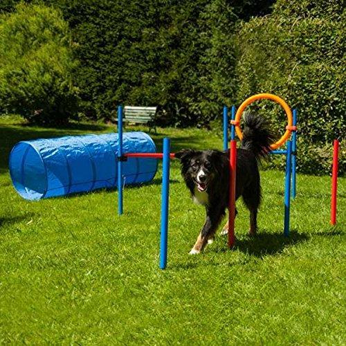 Procyon Dog Agility Maxi-Set