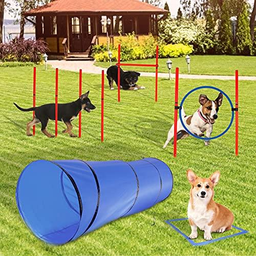 SEAAN Agility Set Hund, Hindernis-Trainings-Starter-Kit Training...
