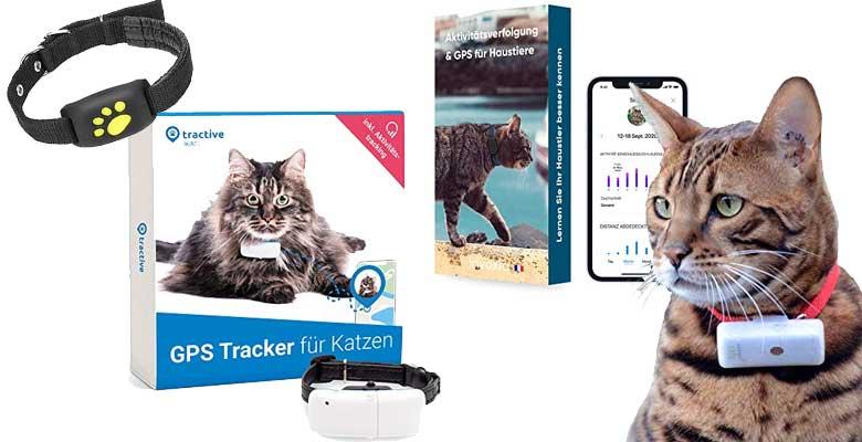 GPS-Tracker für Katzen