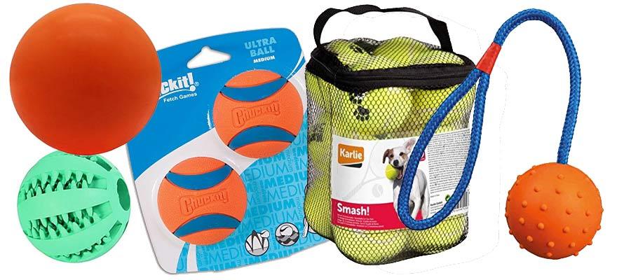 Ballwerfer für Hunde