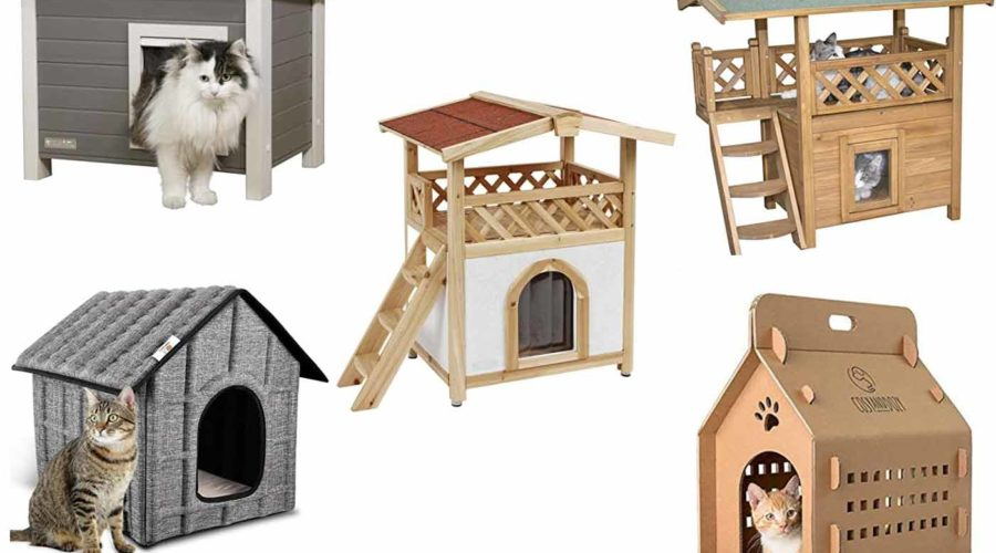 Katzenhäuser