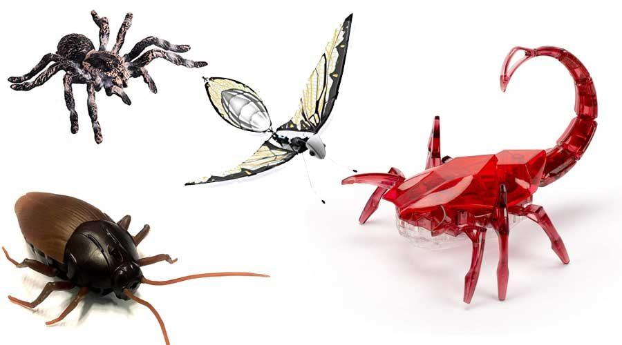 ferngesteuerte Insekten
