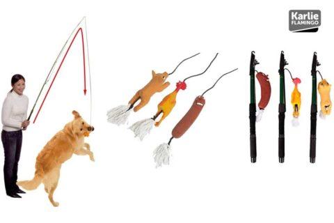 Hunde Trainingsangeln