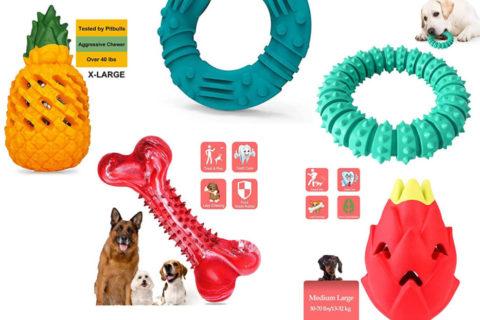 unzerstörbare Hundespielzeuge